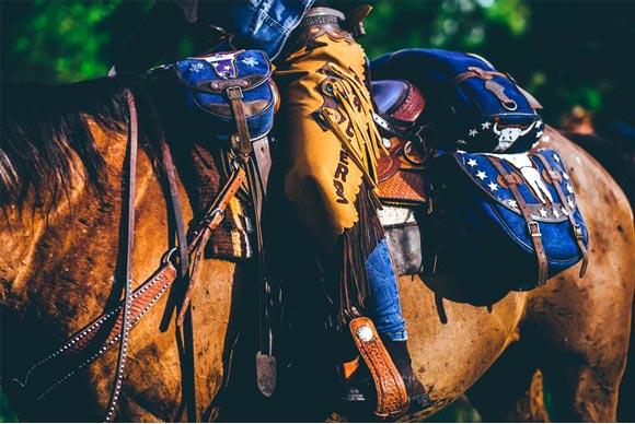 bisacce cavallo per selle western