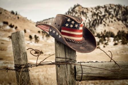 Cappelli Cuoio Cowboy-Western